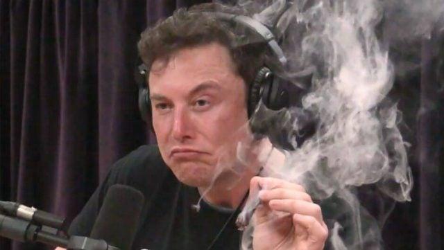 Elon Musk Joe Rogan Upplev ogräs