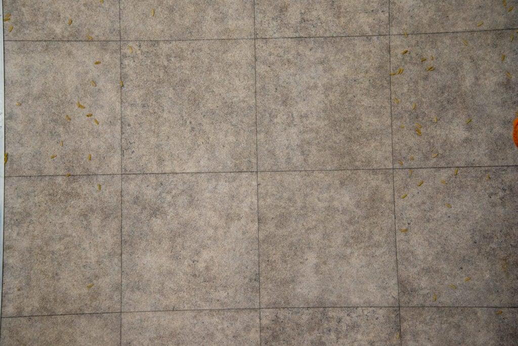 Hoover H-Upright 300 rent hårt golv