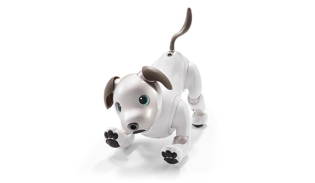 Aibo robothund